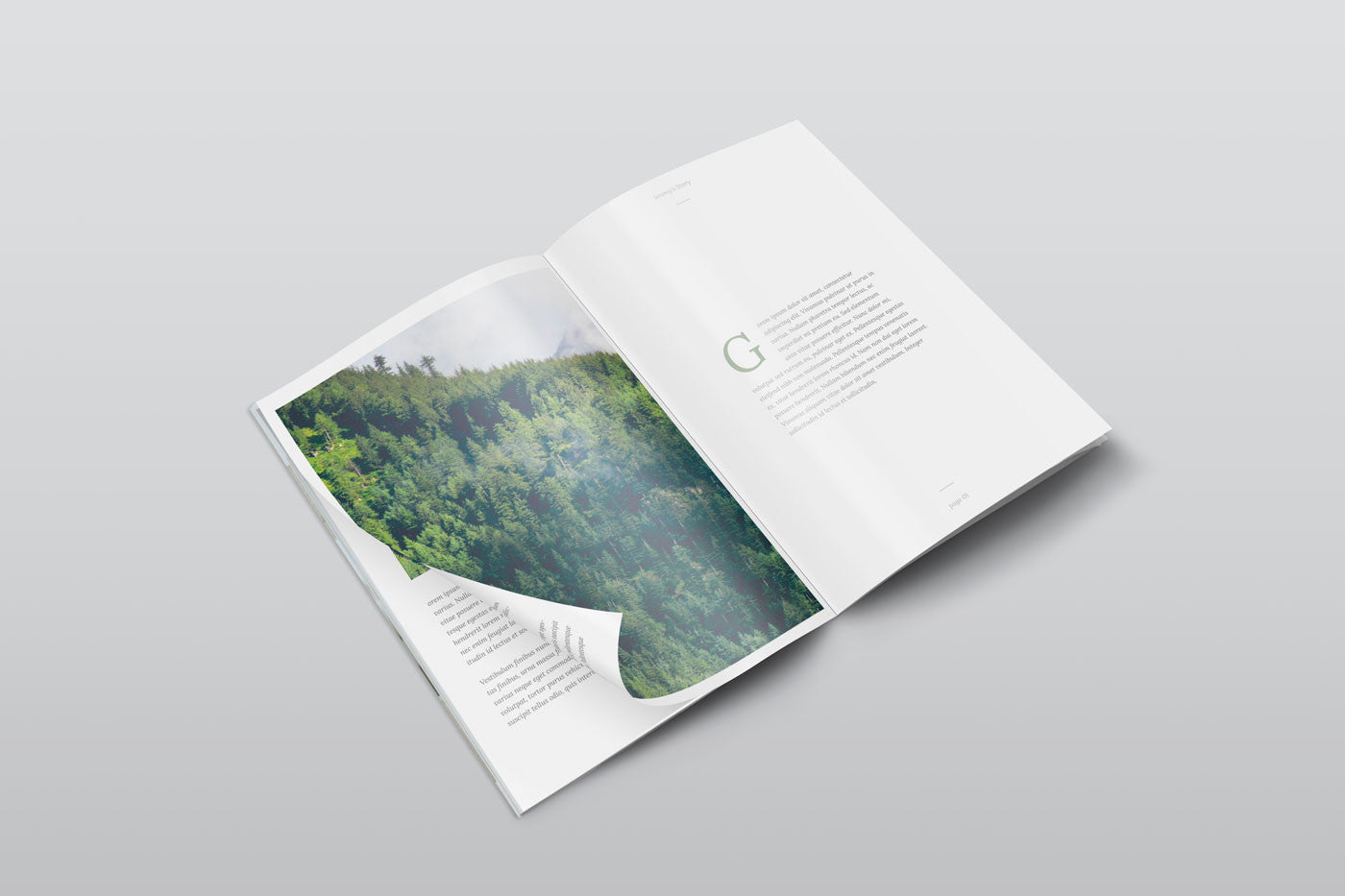 free a4 psd magazine mockup isometric view creativebooster