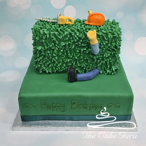 Falling Through A Hedge Birthday Cake