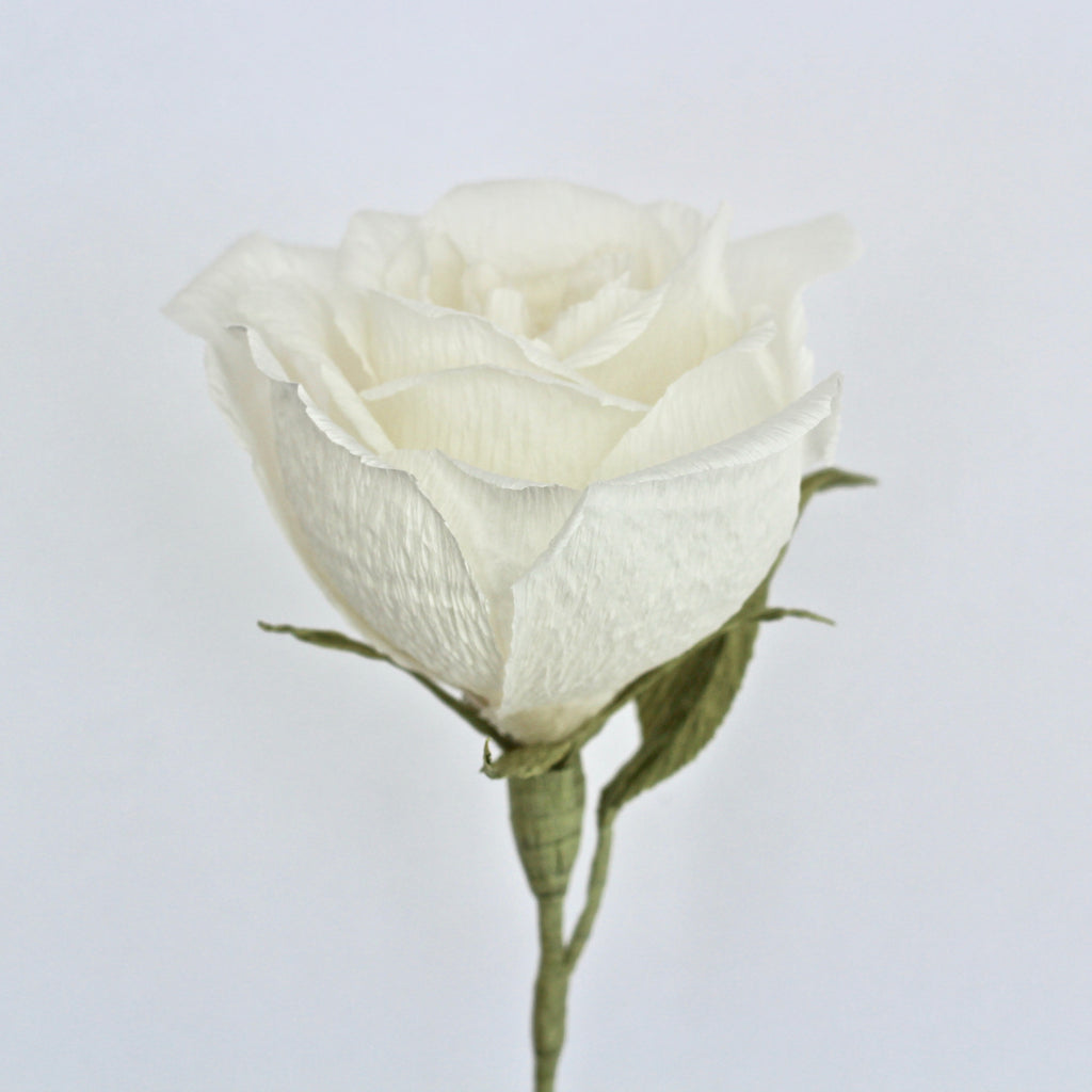 Single Stem White Paper Rose