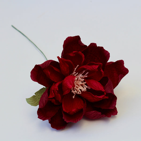 Deep Red Paper Peony