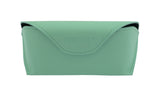 02-Mint: Mint green case w/soft black interior.