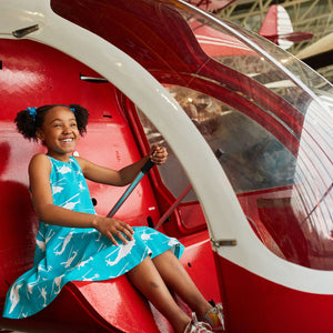 Helicopters Skater Play Dress