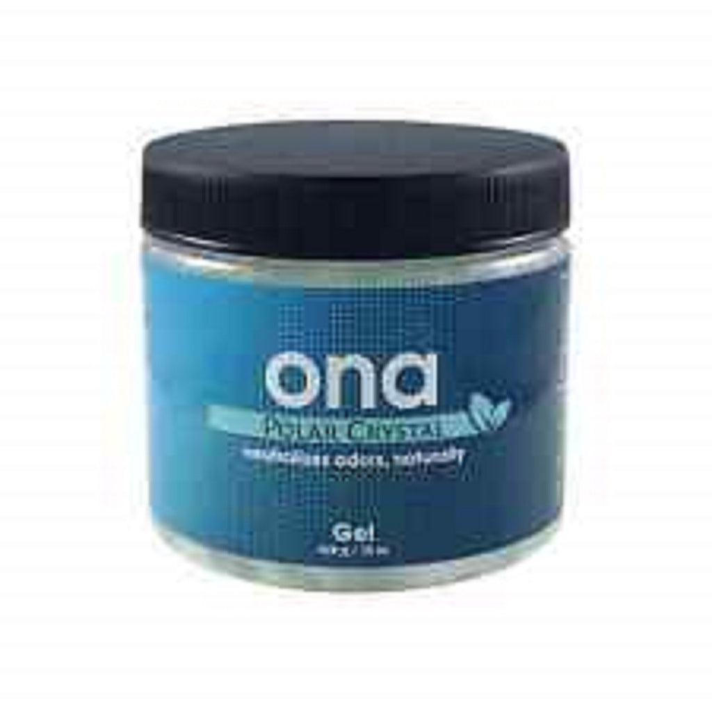 Odor Neutralizer - Odorless ONA Gel Polar crystal (500g)