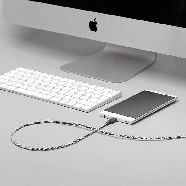 Native Union Belt Cable USB-C to USB-A - Zebra - Burrows and Hare