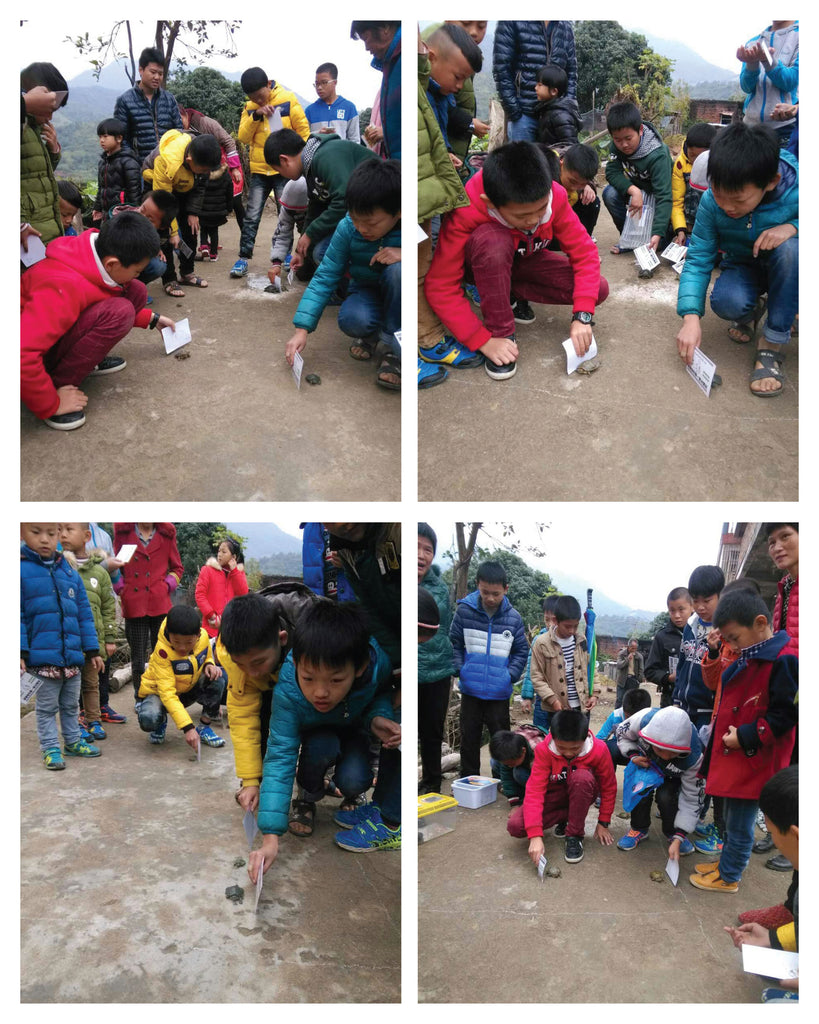 Event moments at the Inaugural Terrapins Race 2017, He Mei Village, Anxi, Fujian, China.