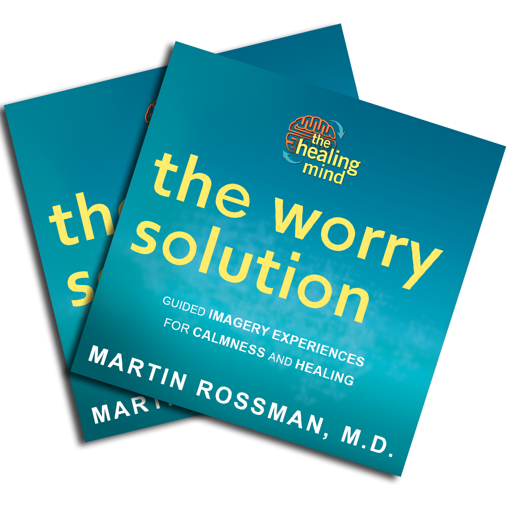 The Worry Solution: Guided Experience 2 CD Set