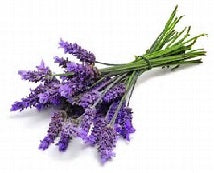 Lavender Air Freshener Spray