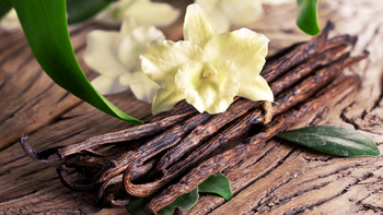 The Medicinal Value of Vanilla