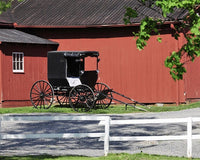 A Neighbor's View of the Amish
