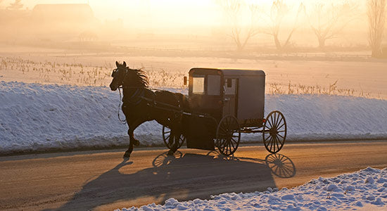 Welcome To The Winter Online Amish Marketplace