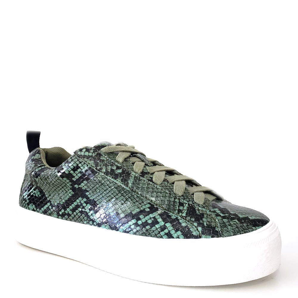 Women's Shoe Republic Green / Black Snake Skin Lace Up Sneakers - Soto