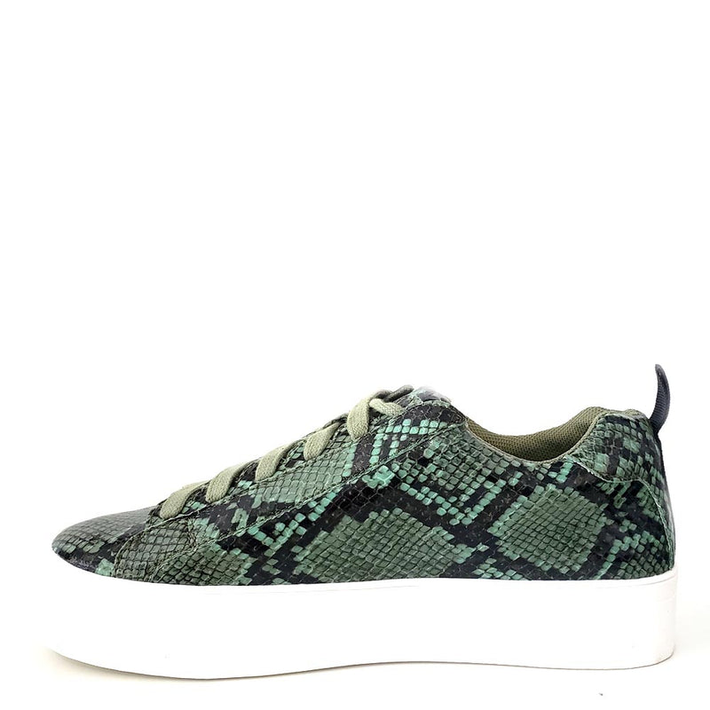 Shoe Republic Green / Black Snake Skin Lace Up Sneakers - Soto