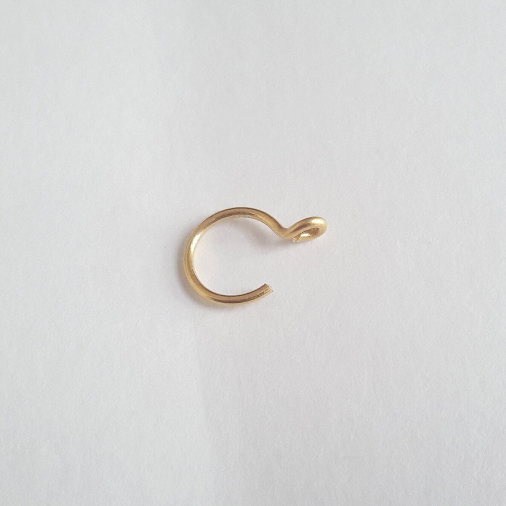 Fake Nose Ring - Cat's Curiosity Shop