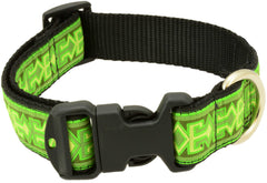 "Dog Clip Collar Small 1 1/4"" width - Clearance"