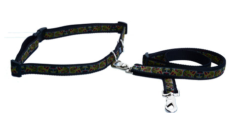 Walking Belt and Leash Set