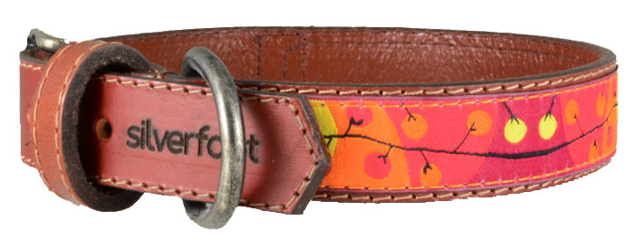 "Dog Leather Collar Large 1"" width"