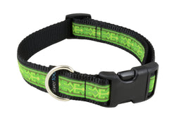 Dog Clip Collar - Minnowflex Lime