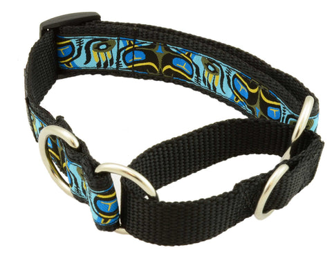 "webbing restraint, material training, material martingale, stainless d-ring, 1"" wide, nylon webbing, unique patterns, brilliant designs, training collars, martingale collar, bright patterns, Canadian made, first nation inspired patterns"