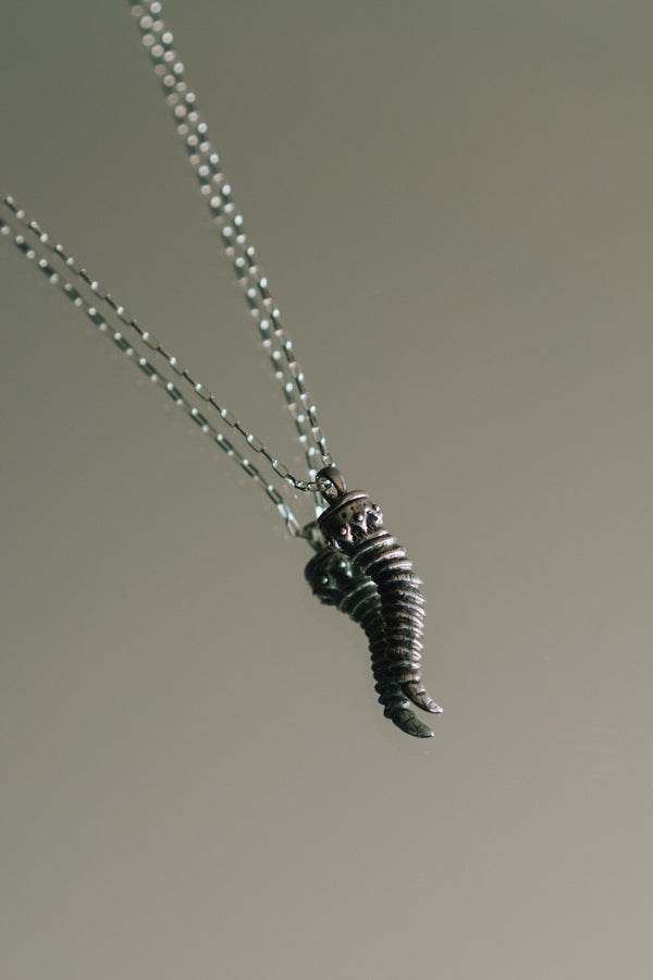 Goat Horn Sterling Silver Necklace