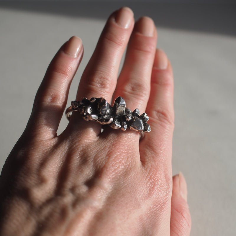 Silver Crystalized Double Ring
