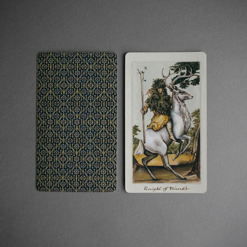 Uusi Pagan Otherworlds Tarot Deck, Tarot, Uusi - Altar PDX