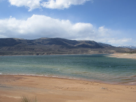 Blue Mesa Reservoir: Colorado Beach