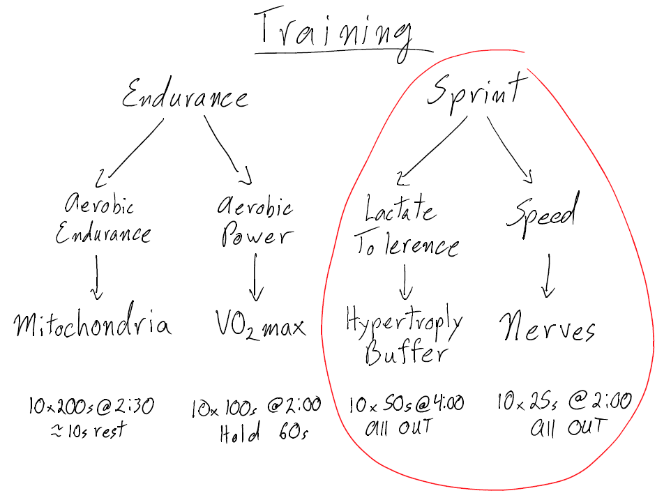 Sprint Training- Top Speed that Lasts |