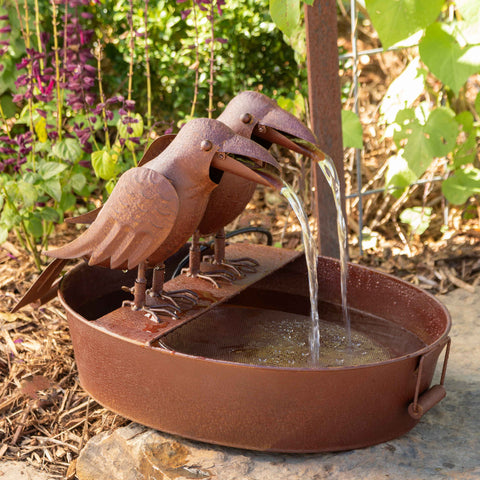 Crow Fountain in Farm Tub