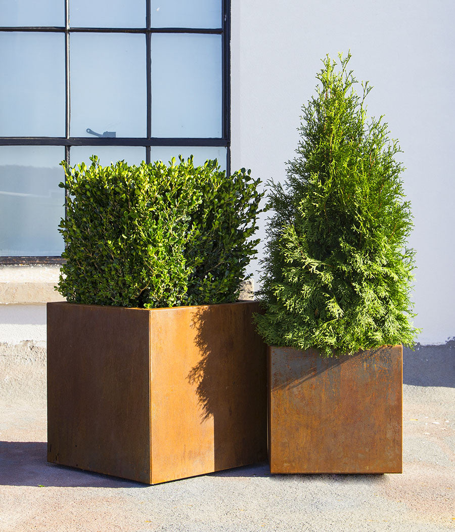 Planterscape Park Row CorTen Steel Square Planter