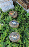Fairy Garden Bird Stepping Stones – set of 3