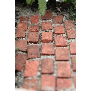 Fairy Path Bricks