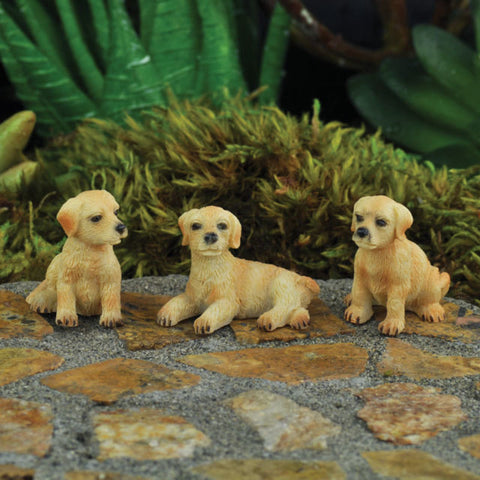 Mini Hound Dogs | Set of 3 Asst.