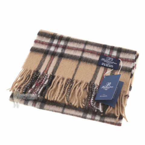 100% Scottish Lambswool Camel Scarf
