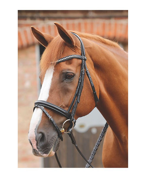 PE Bellissima Crank Bridle with Diamante Browband