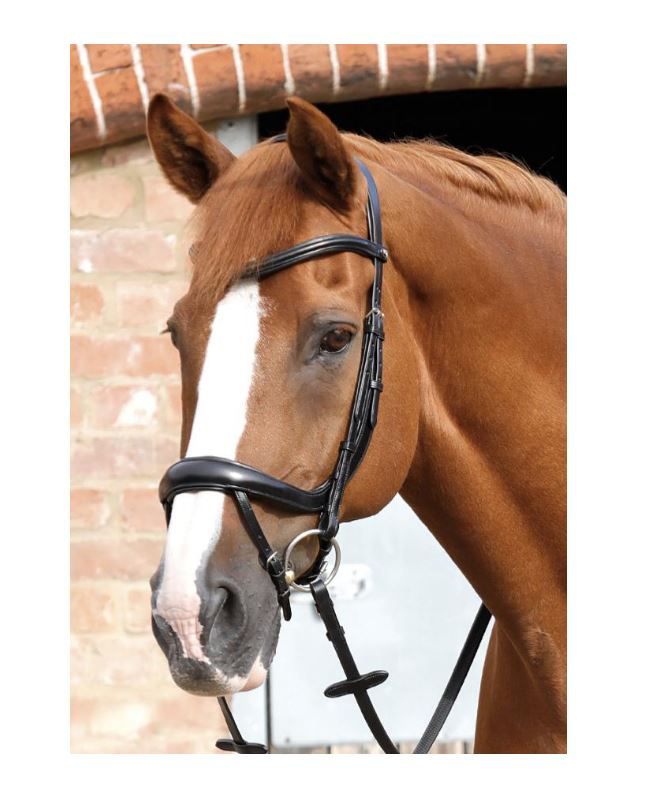 PE Savuto Anatomical Bridle with Crank Noseband & Flash