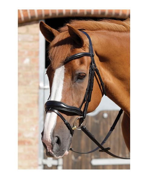 PE Rizzo Anatomical Snaffle Bridle with Flash