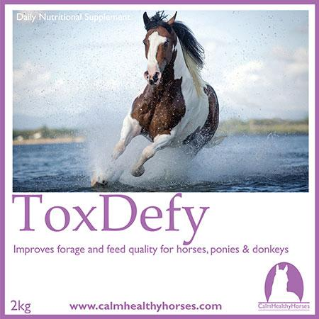 Calm Healthy Horses - ToxDefy Plus