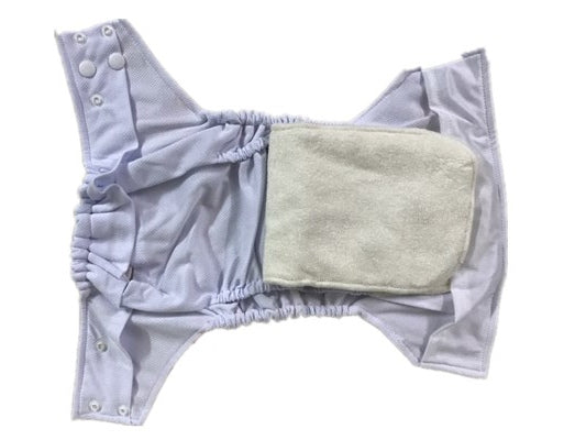 FoxGoo All in Two Cloth Diaper, Kitten with Snap-in 4 layers bamboo insert