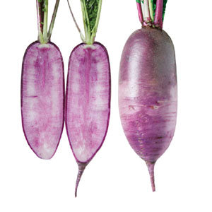Radish - Bora King Korean