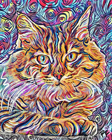Cat Art, Feline Canvas, Pet Art