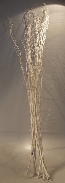 Salix Bleached White Willow Branches, Bunch of 5