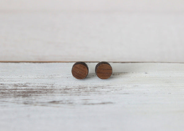 Faux Plug 6mm Circle Earrings