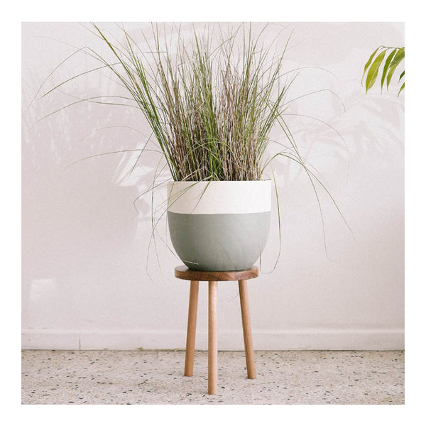 dip pot - eucalyptus/large