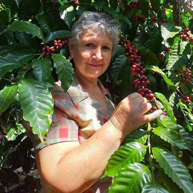Welcome to Aldea Los Tecomates en Palencia in Guatemala from growers Finca San Jorge and owner Silvia de Lemus. This farm at 1,400-1,600 meters high is from where the female founders of Cute Coffee procured the beans! They then roast them to perfection in Oakland, CA.