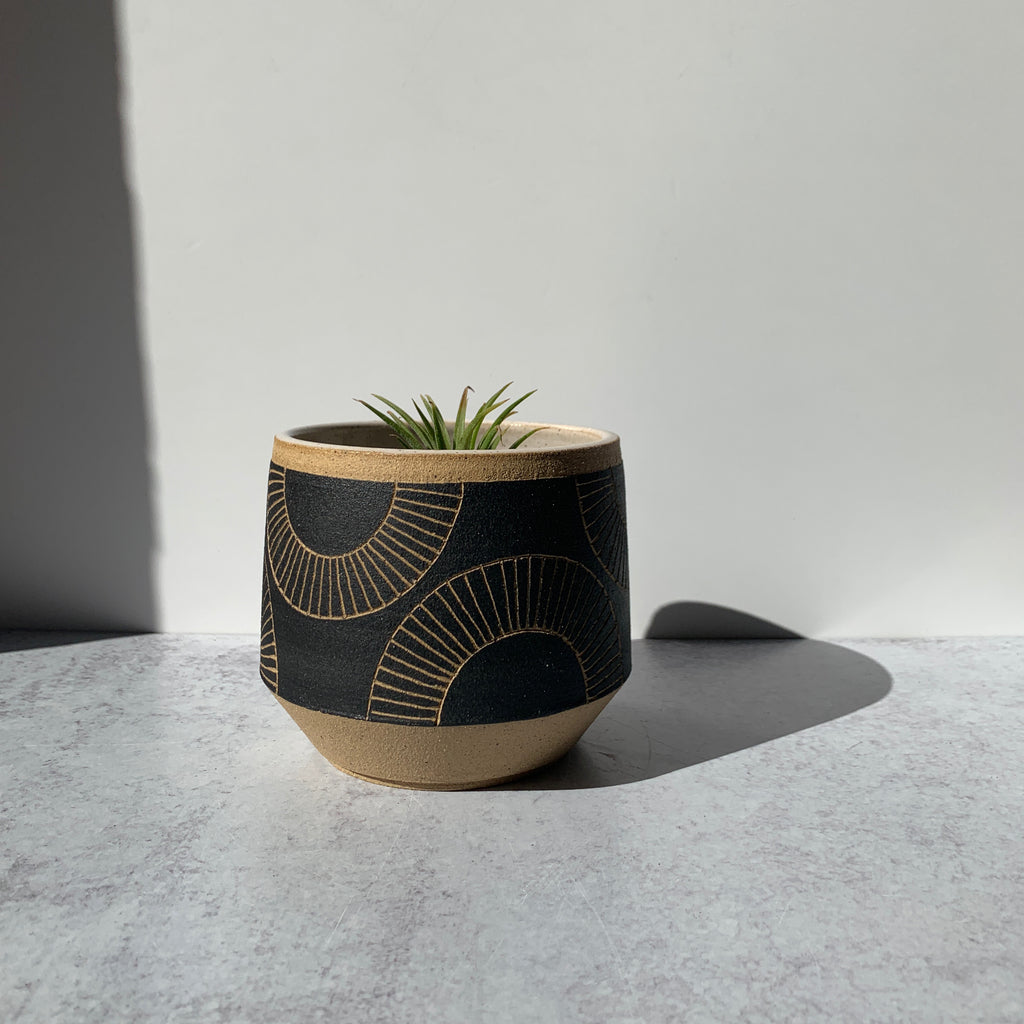 "Julems 5"" planter in black with carved half circles."