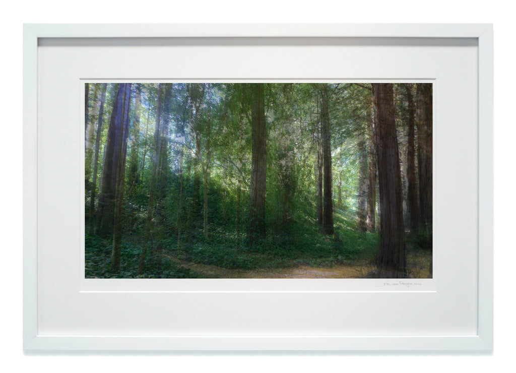 Light Waves in high gloss white wood frame with museum glass