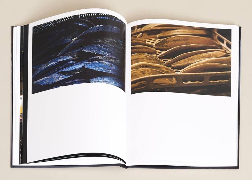 A inside book spread from Connective Tissue, a beautiful coffee table book by Terasu.