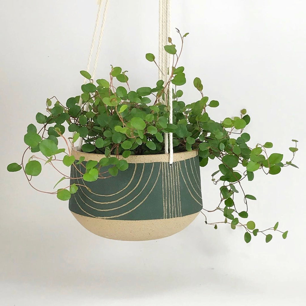 "Judith's wheel thrown 5"" hanging planters create mix and match delight with their geometric designs and fresh style."