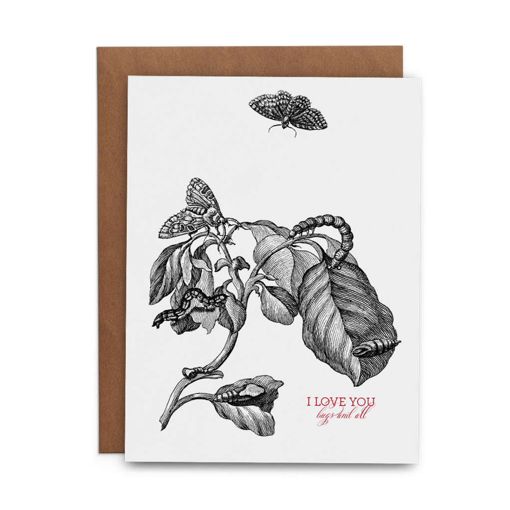 I love You Bugs and All - Lost Art Stationery