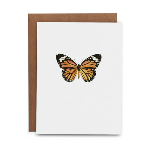 Butterfly Box Set - Lost Art Stationery